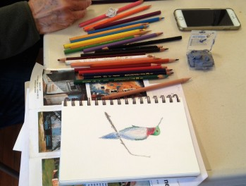 03-18 BSG colored pencil (9)